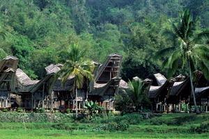 Circuit individuel - Bali - Indonésie - Mosaïque indonésienne
