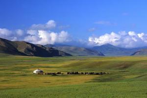 Circuit organisé en groupe - Mongolie - Mongolie Intimiste
