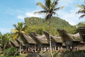 Circuit organisé en groupe - Promotions - Bali - Indonésie - La Palette Indonésienne
