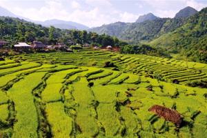 Circuit organisé en groupe - Vietnam - Vietnam Odyssée